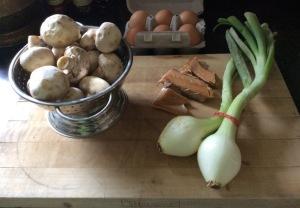 Mushrooms-spring onions-fresh eggs-smoked salmon